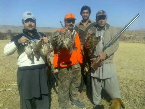 Partridge Hunting, Landi Arbab Group, Peshawar Pakistan. Arbab Ghayur & Qazi Brothers