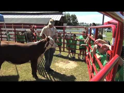 Ag Day For Students In Bulloch County, Georgia