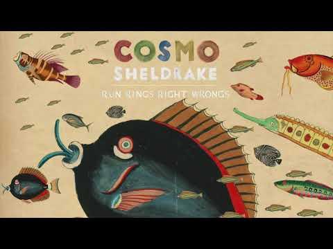 Cosmo Sheldrake - Run Rings Right Wrongs