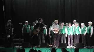 The Cannons with The Irish Pensioners Choir - The Wild Rover