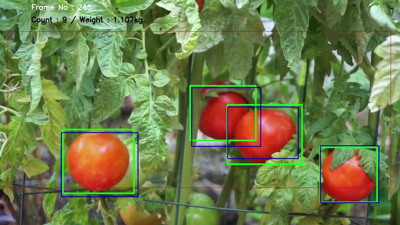 Multi object tracking with darkflow(CNN) and OpenCV