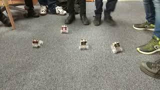Car race between Science & Technology Club students