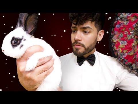ASMR - Rude Masseur Bunny Spa (Sassy Male Whisper)
