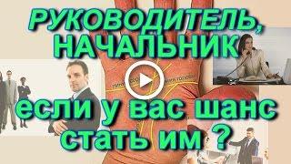видео К чему снится начальник (мужчина, женщина) с работы – сонник