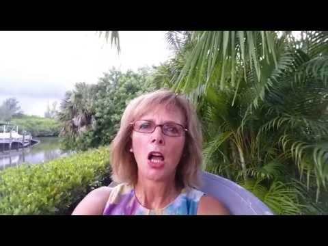 Meine Zeit in Florida