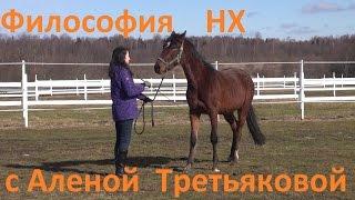 Философия НХ.  Natural Horsemanship. Семь игр. Мастеркласс Алёны Третьяковой.