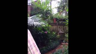 Arbor Pointe Garden 2014