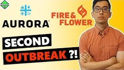 MOMENT OF TRUTH! Aurora Cannabis FINANCIALS!! Second Outbreak, Fire and Flower!!!