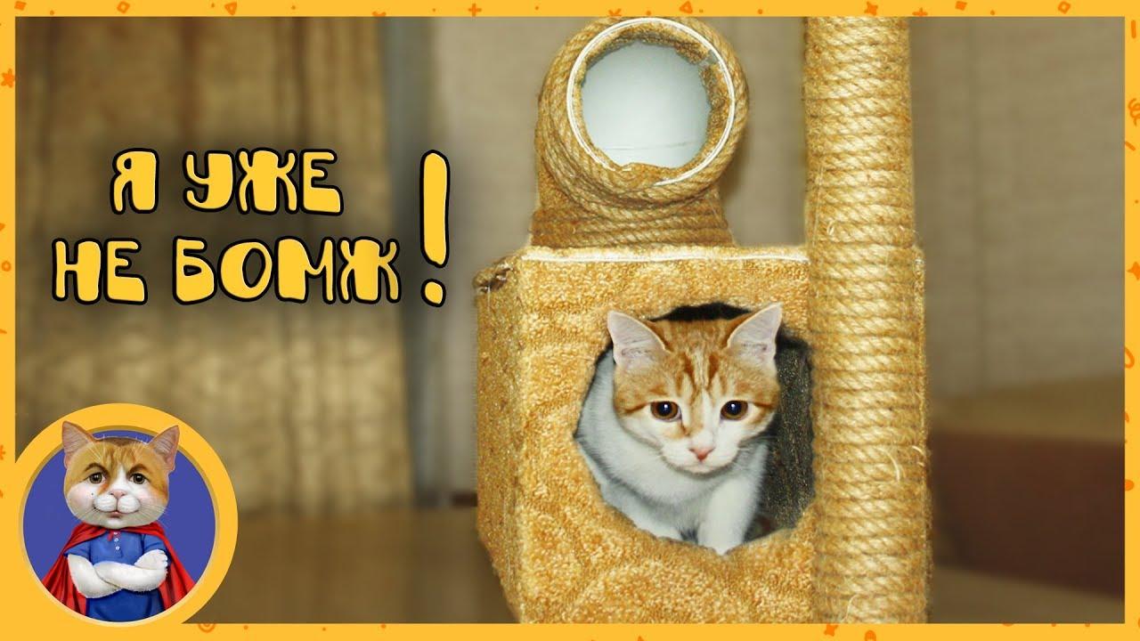 Делаем домик для Рыжика. Как сделать домик для кота своими руками