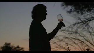 Bibi Graetz - 2019 Harvest on Isola del Giglio