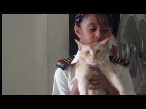 Funny Video Cat, Dog & Monkey