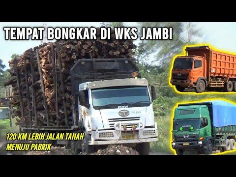 Tempat bongkar Truck Batubara dan Balak di WKS Jambi - YouTube