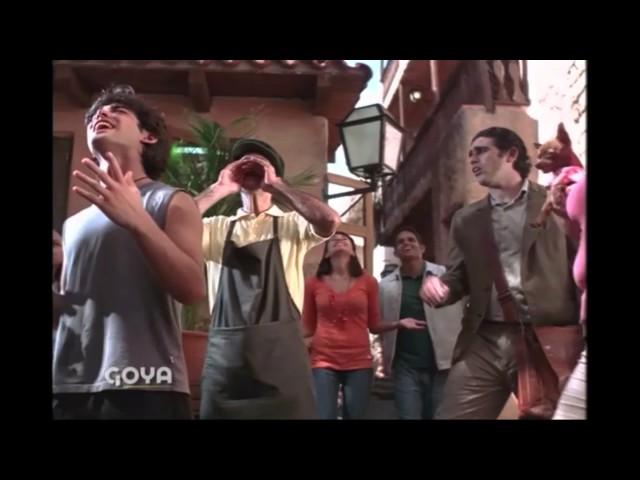 Cubitos en Polvo Goya - comercial - 2008