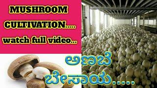Mushroom Cultivation In Kannada Pdf