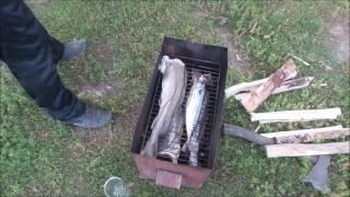 Рыба горячего копчения!Коптим рыбу дома