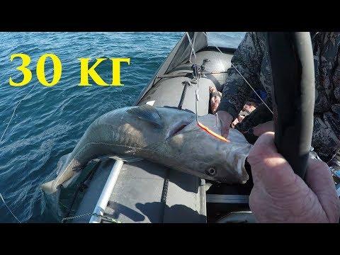 Баренцево море / Трофейная рыбалка / Barents Sea / Trophy Fishing