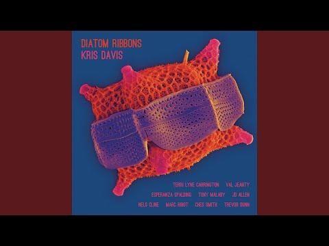 The Very Thing (feat. Esperanza Spalding, Tony Malaby, Trevor Dunn, Val Jeanty & Terri Lyne... Mp3