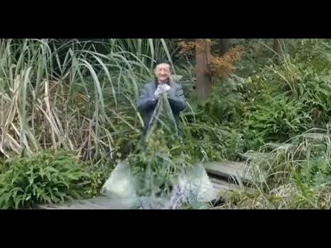 Nuevo invento chino  ¿capa invisible como la de Harry potter  - YouTube 6fe2f2f5f45c