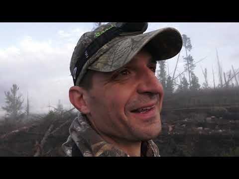 Elk Hunt 2021