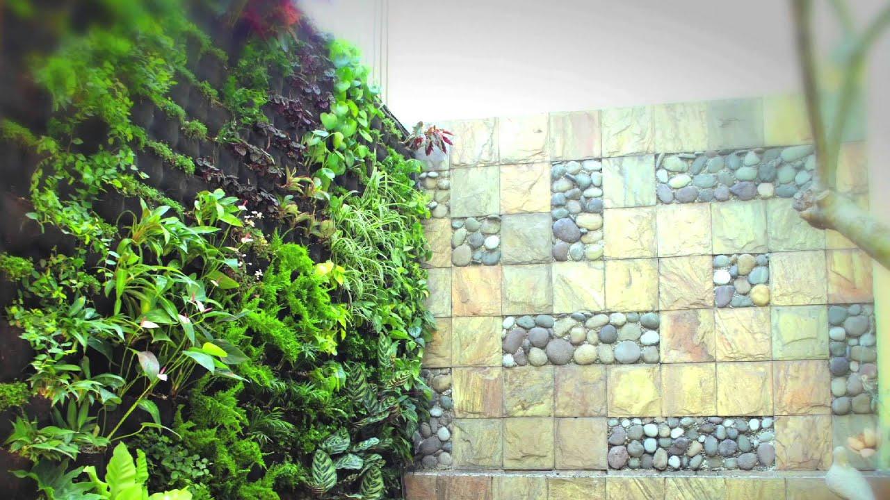 Jardines verticales y azoteas verdes youtube for Muros y fachadas verdes jardines verticales