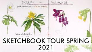 Sketchbook Tour Spring 2021   Nature sketchbook - spring flowers, birds, landscapes