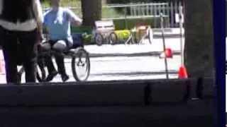 Rottweiler Driving American Rottweiler Club Test