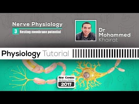 Physiology of nerve (3)   nerve impulse & Resting Membrane Potential