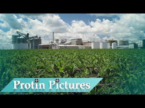 Biofuel: America's Fastest Growing Alternative Energy