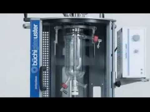 Buchi Pilot Plants and Reactor systems (English)