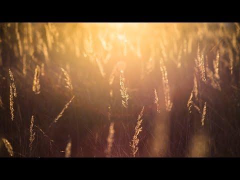 Sundance - Veridis Quo (Chase The Sun Remix)