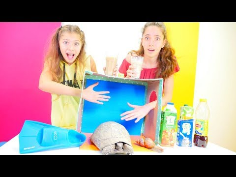 Yeni #Challenge video izle! Kutuda ne var?  Eğlenceli kız ve erkek çocuk videoları!