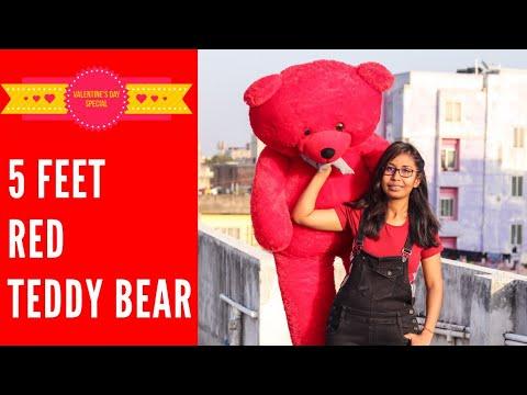 Red Teddy Bear 5 Feet, 5 Feet Red Teddy Bear Unboxing Red Teddy Bear Unboxing Giant Teddy Bear Unboxing Hindi Youtube