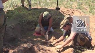 Под Волгоградом поисковый отряд «Нефтехимик» поднял останки двух советских солдат