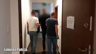 Przestępca zatrzymany przez gorzowskich łowców głów