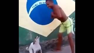 Мальчик с собакой танцуют
