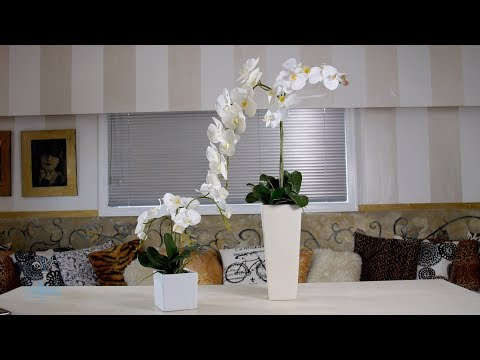 Floristry Design Tutorial: A Lesson on Visual Balance and Actual Balance
