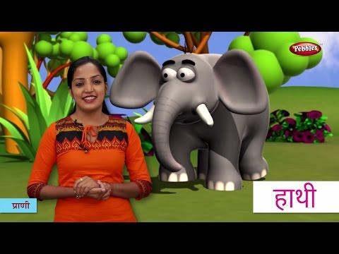 Animal Names In Hindi | हिंदी में प्राणियों के नाम सीखे | Hindi Animal Names For Children