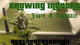 Growing Autoflowering Cannabis - Day 58 - Tips and Tricks