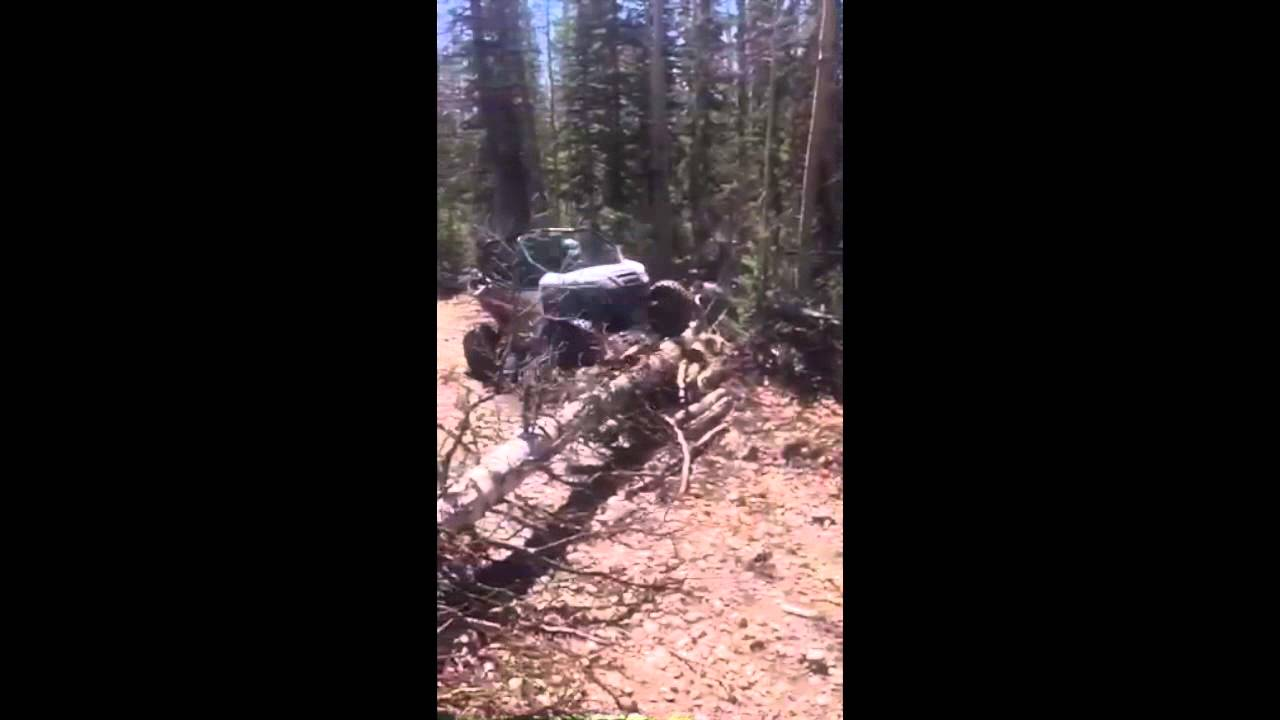 No Chainsaw? No Problem for Arctic Cat Wildcat Sport