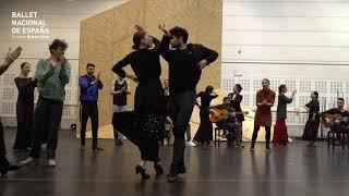 DÍA INTERNACIONAL DEL FLAMENCO 2019. Ballet Nacional de España. Ensayos de Electra.