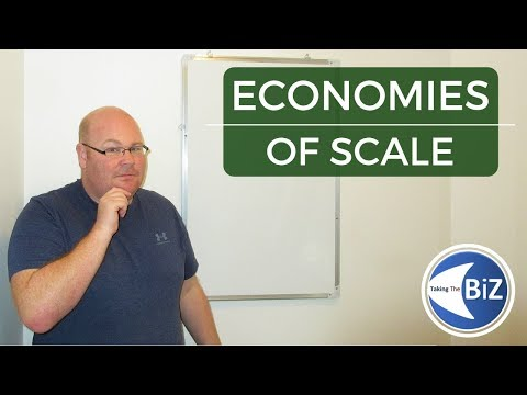 A level Business Revision - Economies of Scale