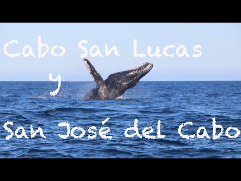Los Cabos : Cabo San Lucas y San José del Cabo BCS
