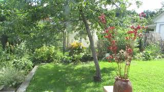 Интересные идеи в моем саду! Кусочек лета 2018!