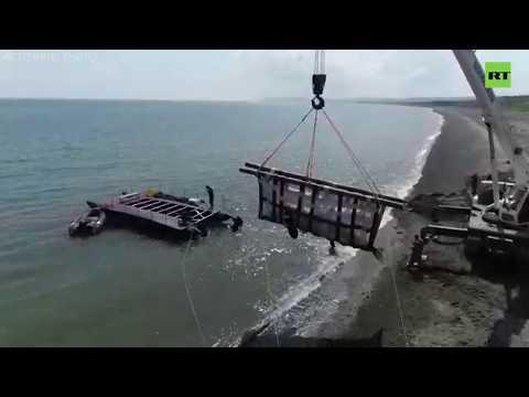 Украшение океана: вторую группу косаток из «китовой тюрьмы» выпустили на волю