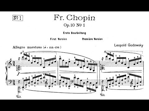 Godowsky: Studies on Chopin's Etudes, Op.10 (Stanhope)