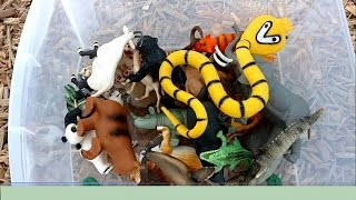 Playing Hide n Seek With Toy ZOO Safari Jungle Wild TOY ANIMALS on Playground SLIDES-Kids Fun Learn