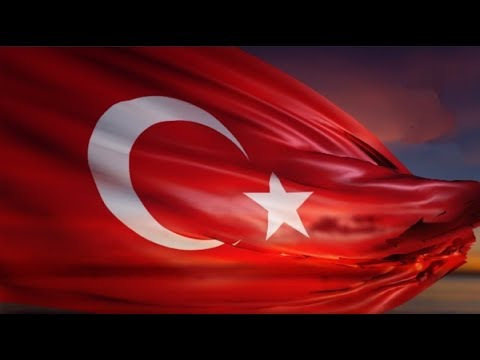 Kule Vinç De Türk Bayrağı 🇹🇷