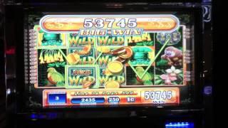 Jungle Wild Mega Jackpot win Max bet Slot Machine