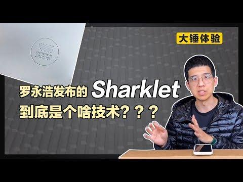 【大锤体验】罗永浩发布的 Sharklet 到底是个啥技术???