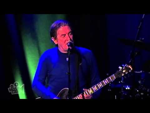 The Saw Doctors - I Useta Lover (Live in Sydney) | Moshcam